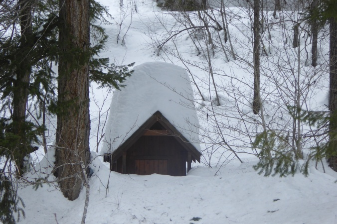 outhouse buried in snow