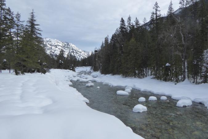 River running through snowy forest.