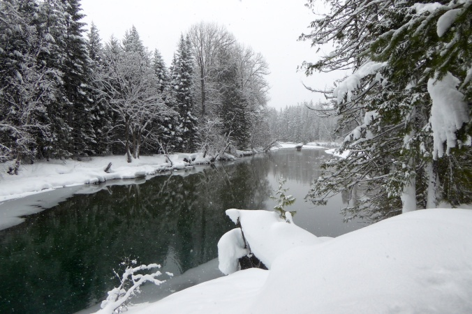 River and snow covered trees