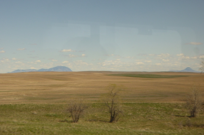 prairie and wheat fields across north central Montana