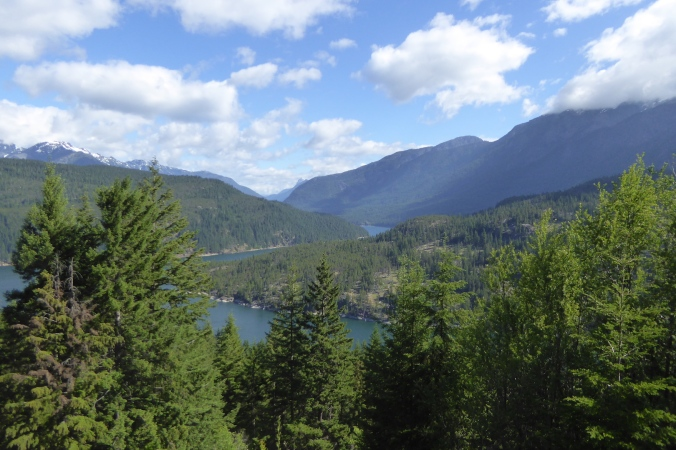 view of mountains and lake with coniferous trees in foreground