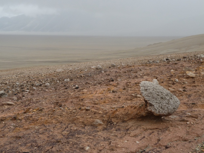 barren area with pumice. Large piece of pumice at lower right.