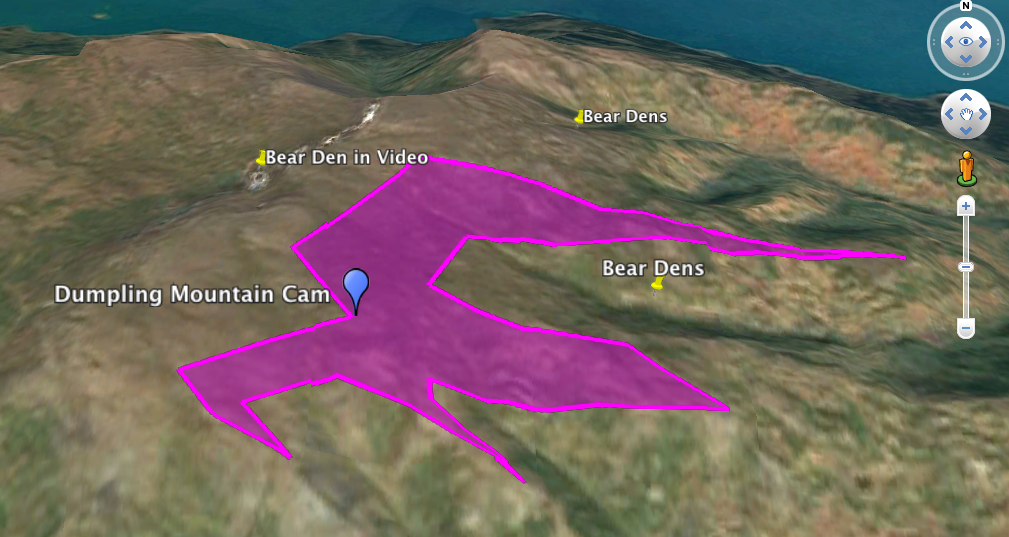 "Screen shot from Google Earth. Purple polygon is viewshed of Dumpling Mountain Cam. Text reads: ""Dumpling Mountain Cam"" ""Bear Dens"" ""Bear Dens"" ""Bear Den in Video"""