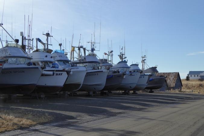 Salmon fishing boats in Naknek