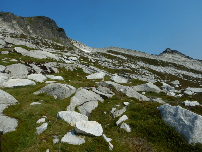 meadow and boulder field looking up to a mountain ridge