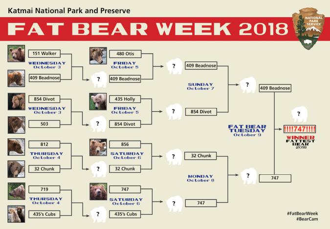 Katmai Fat Bear Week Bracket 2018 Fitz choices.png