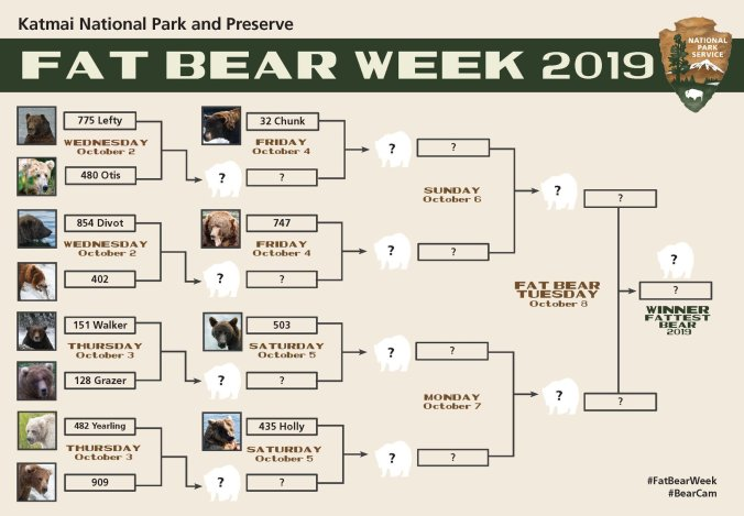 Fat Bear Week 2019 Bracket.jpg