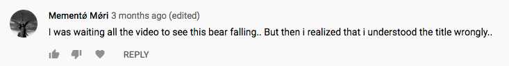 "Screen shot of comment on YouTube video. Text reads, ""Mementø Møri 3 months ago (edited) I was waiting all the video to see this bear falling.. But then I realized that I understood the title wrongly."""