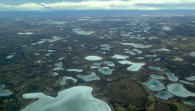 aerial photo of flatlands covered in tundra and dozens of frozen ponds