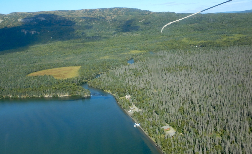 aerial photo of forests, lake, and river. Lake is at lower left. River begins at center is at lower left.