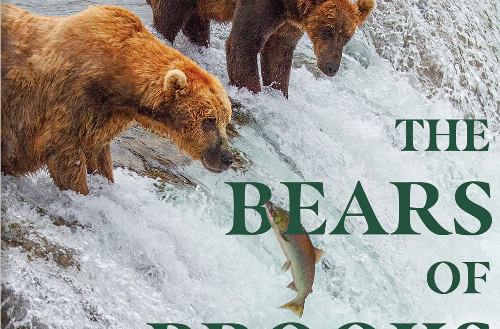 """Screen shot of section of book cover. Bear stands on edge of waterfall at upper left. Text says, """"The Bears of"""