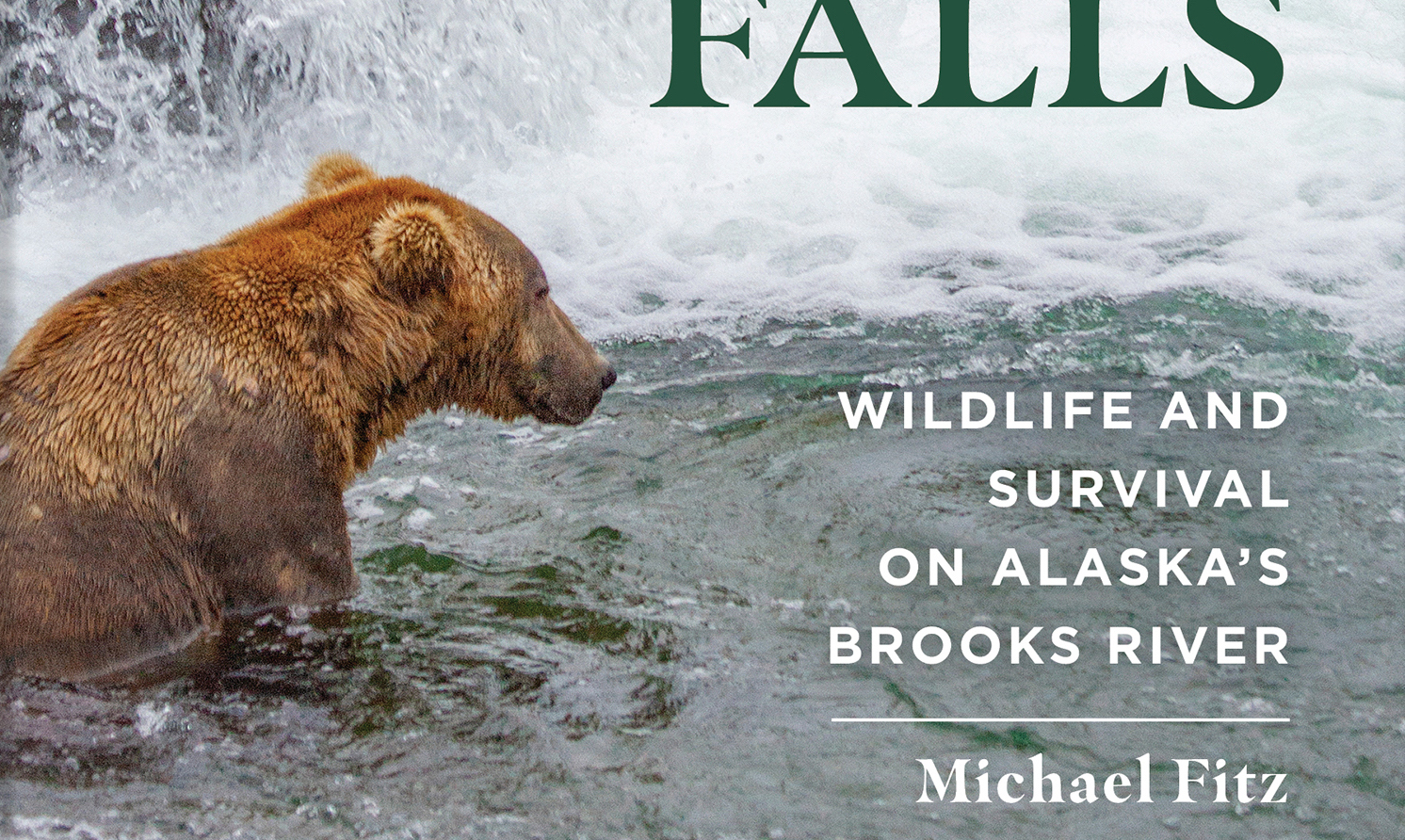 """screen shot of corner of book cover. Bear sits at lower left at base of waterfall. Text says, """"Wildlife and Survival on Alaska's Brooks River 